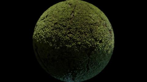 162. Moss#03