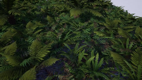 (UE4) The Fern Collection