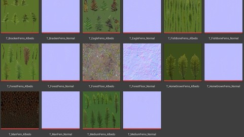 (Textures Only) The Fern Collection