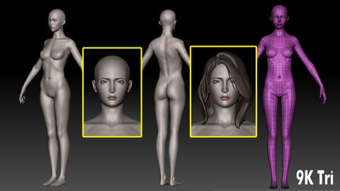 Base Female (9K Triangles) for AAA Game Production. (Clean Topology, UV Mapped, Rig Friendly, 5 Subdivision Levels)