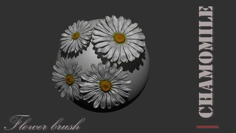 Chamomile / camomile flower brush for zbrush