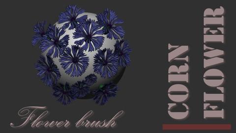 Cornflower brush for Zbrush