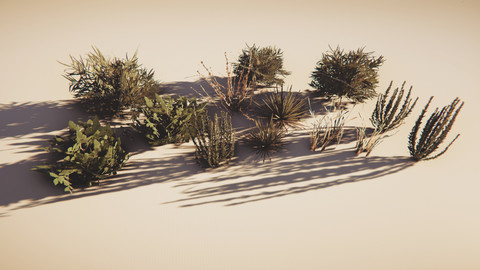 Bushes (Desert Plants)
