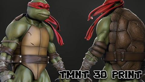 TMNT - Teenage Mutant Ninja Turtles Rafael 3D Print