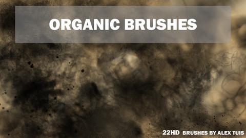 ORGANIC BRUSHES