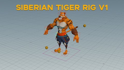 Siberian Tiger Rig For Games
