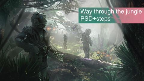 """""""Way through the jungle"""": PSD+steps"""