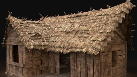 AAA Next Gen Thatched Wooden House Cottage Hut