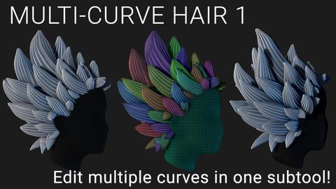 Multi-Curve Hair 1