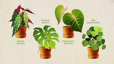 Desktop Plant Icons