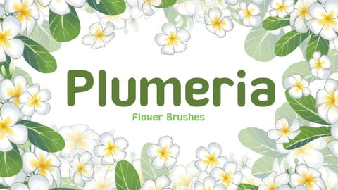 Plumeria Flower Brush