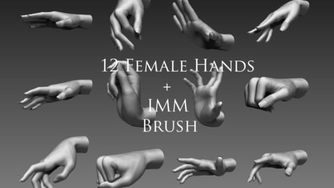12 Female Hands IMM