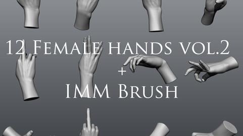 12 Female Hands 2