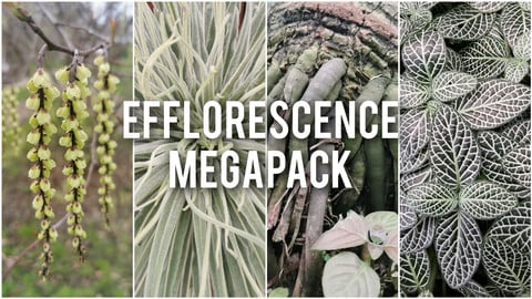 Efflorescence references MEGAPACK