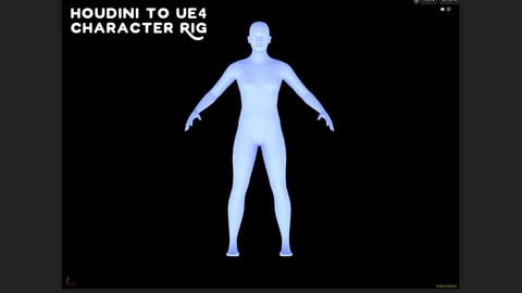 Houdini Biped Character Rig for UE4