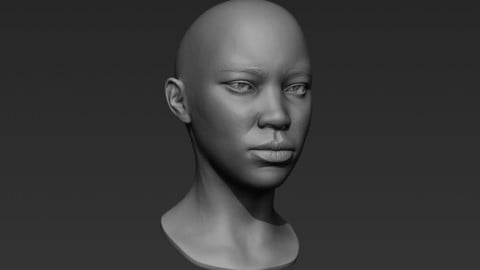 3d Printable Female Head 1