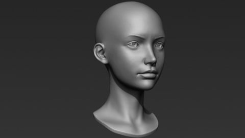 3d Printable Female Head 5