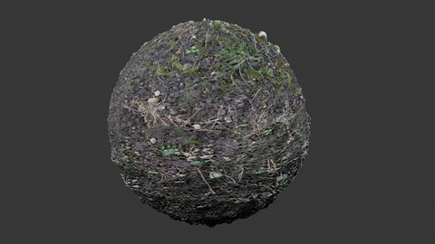 SEAMLESS GROUND DIRT TEXTURE 2