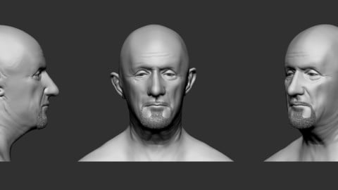 Mike Ehrmantraut's face