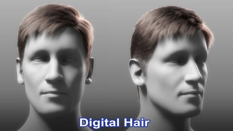 Realistic Male 3D Hair Asset 3D model