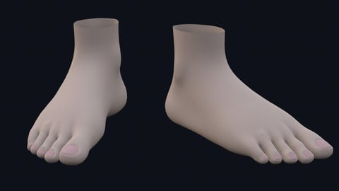 Foot for Character Basemesh Low-poly 3D model