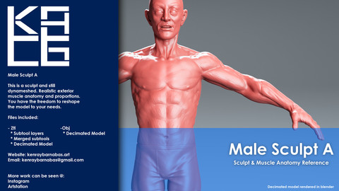 Male Sculpt A