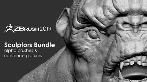 Sculptors Bundle - 32 Alpha Brushes + Basemesh & 30 Reference Pictures