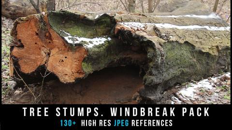 Tree Stumps. Windbreak