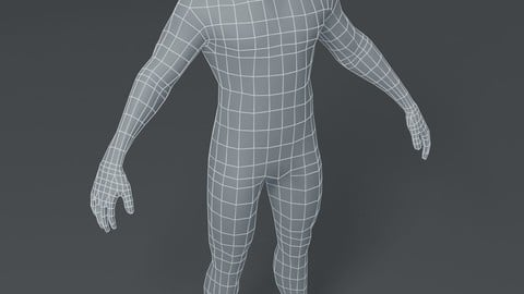 Male Body Base Mesh 3D Model