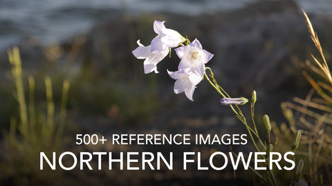 Northern Flowers Reference Pack