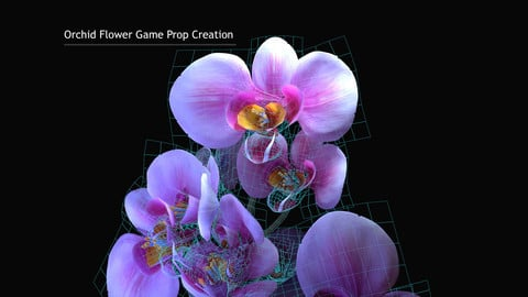 Orchid Flower Game Prop Creation