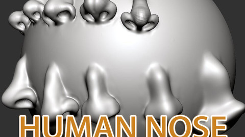 HUMAN NOSE VDM BRUSH 1.0