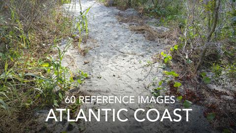 Atlantic Coast Photo Reference Pack