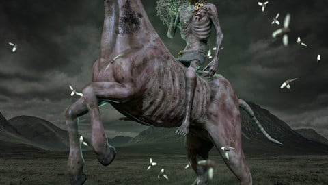 Undead Horse and Rider