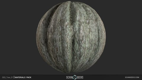 Tree Bark Material - Photogrammetry 3D PhotoScan