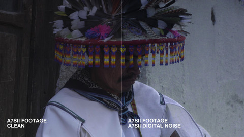 A7SII Digital Noise Pack - by Blauw Films