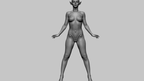 Stylized Female Anatomy 02