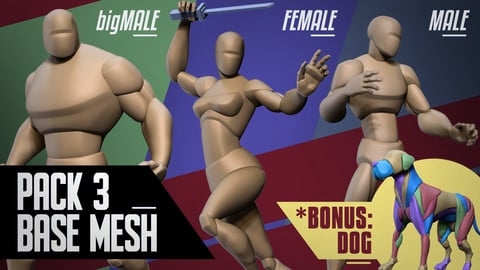 Stylized Basemesh Pack of 3