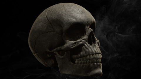 PAINTED SKULL HIGH POLY