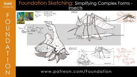 Foundation Art Group - Foundation Sketching: Simplifying Complex Forms - Insects with Charles Lin