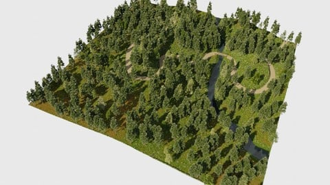 Forest paths in Blender