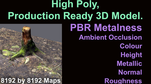 Tree Stump - High Poly - Production Ready - 3D Model - PBR Metalness Maps.