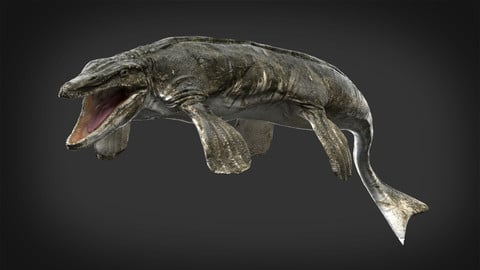 3D model Tylosaurus (Rigged)