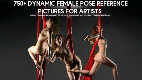 750+ Dynamic Female Pose Reference Pictures