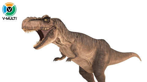 3D Model: Tyrannosaurus Rex