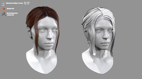 Realtime Bun and Tail Hairstyle