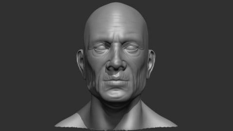 Old Male Head Realistic Base Mesh 3D Model