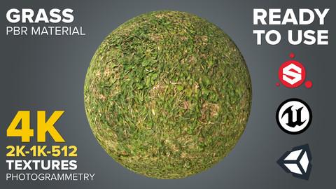 Grass - Photogrammetry-based Environment Texture