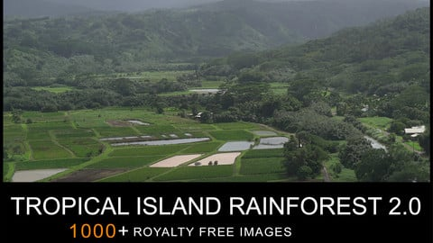 REF PACK TROPICAL ISLAND RAINFOREST