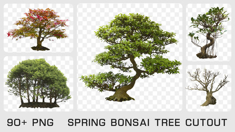 SPRING BONSAI TREE CUTOUT - Photo reference pack - 90+ PNG & 1 bonus PSD